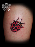 LadyBug by Andrea Swabb
